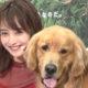 佐々木希、愛犬と登場!さらにamazonのCMで話題のあのワンちゃんも登場!映画「僕のワンダフル・ライフ」