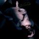 松坂桃李主演!女性の性の欲望をありのままに描いた刺激的な映画『娼年』R18+
